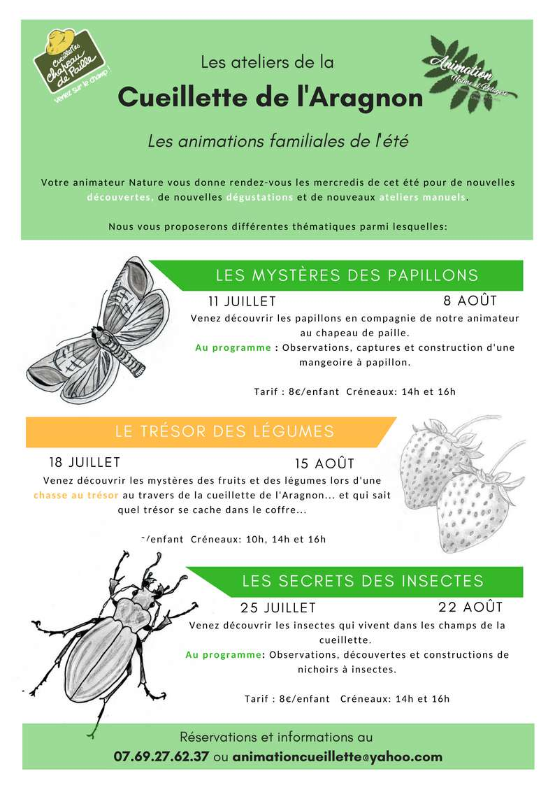 Plannings des animations estivales 2018